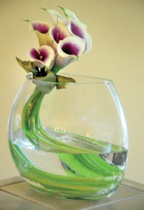 curvaceous-calla-lilies-impress