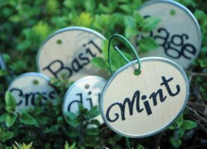 Leave Your Mark With Custom Herb Markers